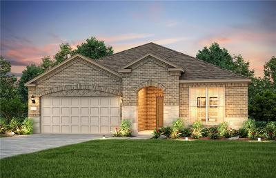Frisco Single Family Home For Sale: 2085 Harbor Pointe Drive