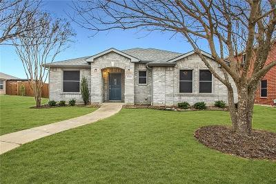 Frisco Single Family Home For Sale: 12506 Canoe Road