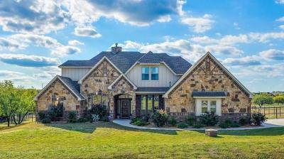 Aledo Single Family Home For Sale: 395 Scenic View Drive