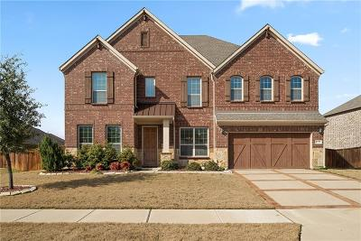 Frisco Single Family Home For Sale: 1178 Roma Drive