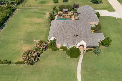 Prosper Single Family Home For Sale: 1591 Blue Forest Drive