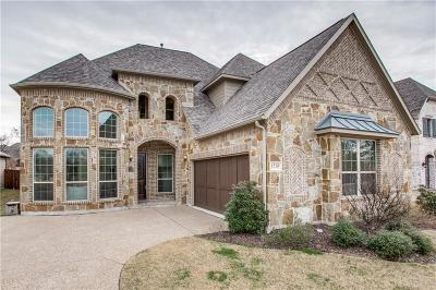 Allen Single Family Home For Sale: 1210 Winton Drive