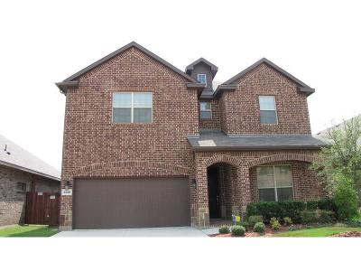 Fort Worth Residential Lease For Lease: 3440 Glass Mountain Trail