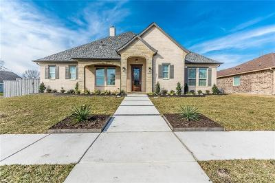 Rowlett Single Family Home For Sale: 8001 Trail Lake Drive