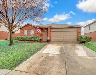 Little Elm Single Family Home For Sale: 2220 Willow Drive