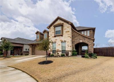 Denton County Single Family Home For Sale: 9200 Benbrook Lane
