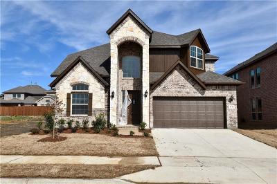 Little Elm Single Family Home For Sale: 1212 Horsemint Drive