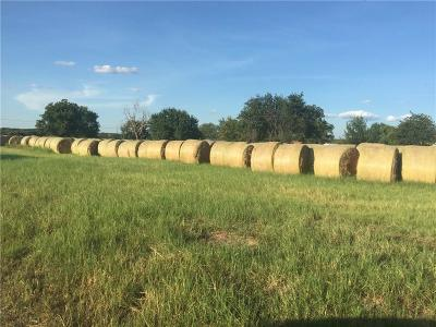 Weatherford Farm & Ranch For Sale: 120 Red Hawk Road