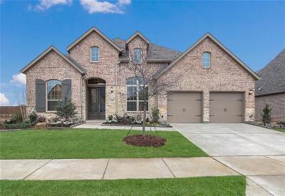 Denton County Single Family Home For Sale: 16208 Cullen Park Walk