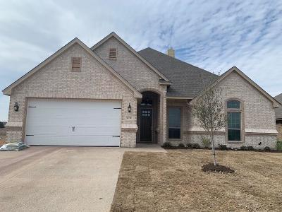 Tarrant County Single Family Home For Sale: 6716 Fire Dance Drive