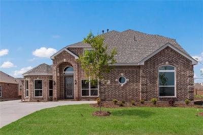 Grand Prairie Single Family Home For Sale: 2700 Grand Colonial