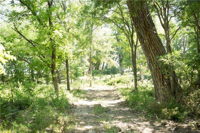 Comanche County Residential Lots & Land For Sale: 1800 County Rd 376