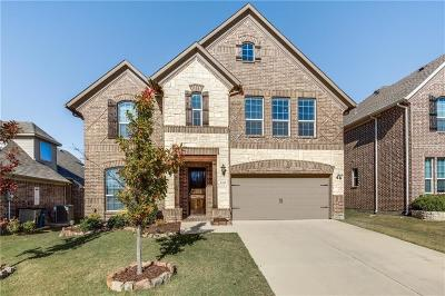 Little Elm Single Family Home For Sale: 2329 Ranchview Drive