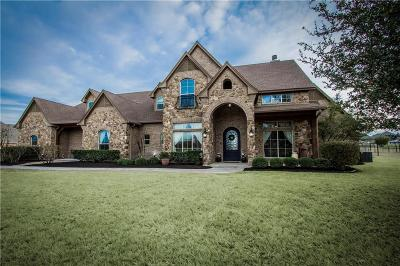 Parker County Single Family Home Active Option Contract: 146 Turkey Creek Drive