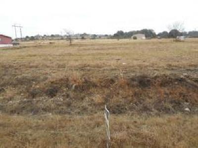 Weatherford Residential Lots & Land For Sale: L21 B2 Denton Heights Lane