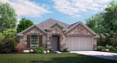 Prosper Single Family Home For Sale: 16016 Placid Trail