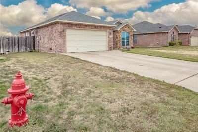 Weatherford Single Family Home For Sale: 1849 Roadrunner Drive