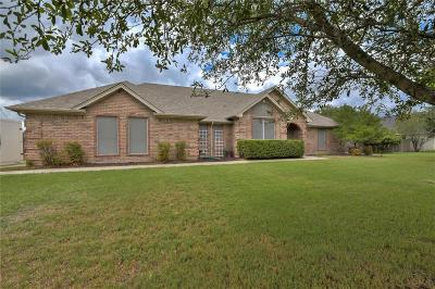 Single Family Home For Sale: 206 Southview Drive