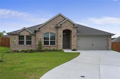 Weatherford Single Family Home For Sale: 2501 Silver Fox Trail