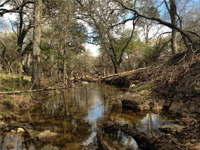 Brown County Farm & Ranch For Sale: 2900 Fm 590 S