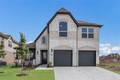 Little Elm Single Family Home For Sale: 1220 Nannyberry Drive