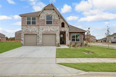 Little Elm Single Family Home For Sale: 1704 Frisco Hills Boulevard