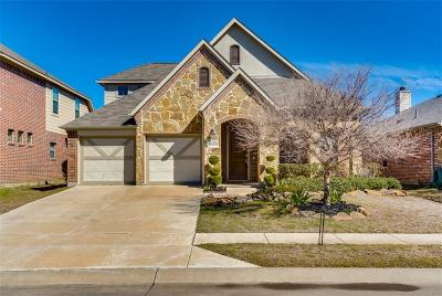 Frisco Single Family Home For Sale: 11613 Summer Springs Drive