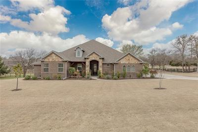 Parker County Single Family Home For Sale: 430 Addison Drive