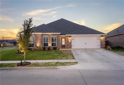 Denton Single Family Home For Sale: 805 Oak Valley