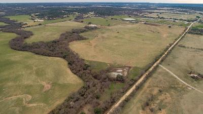 Stephenville Farm & Ranch For Sale: 13679 County Road 128