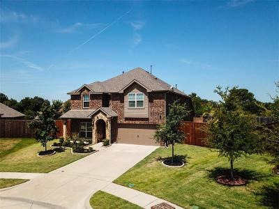 Rowlett Single Family Home Active Option Contract: 4809 Stacy Court
