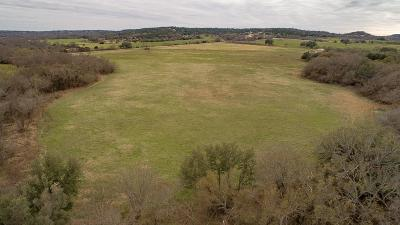 Farm & Ranch For Sale: 13679 County Road 128