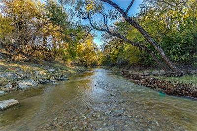 Comanche Farm & Ranch For Sale: County Road 419