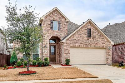 Mckinney Single Family Home For Sale: 10713 Irene Drive