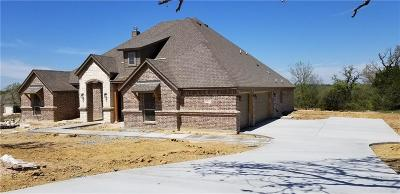 Parker County Single Family Home For Sale: 1031 Rio Grande Way