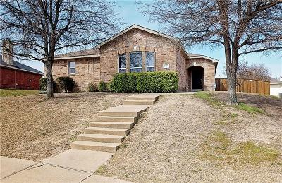 Mesquite Single Family Home For Sale: 2035 Pecan Creek Drive