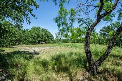Cedar Hill Residential Lots & Land For Sale: 500 S Lakeview Drive