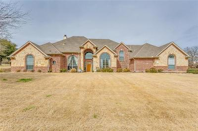 Aledo Single Family Home For Sale: 233 Muir Hill Drive