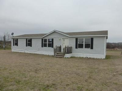 Springtown Single Family Home For Sale: 351 Big Salty Drive