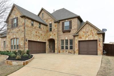 Allen Single Family Home For Sale: 1622 Alamosa Drive