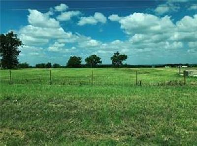 Palo Pinto County Farm & Ranch For Sale: 4200 1195 Road