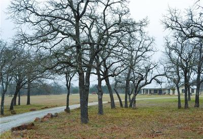 Palo Pinto County Single Family Home For Sale: 1323 Prickly Pear Trail