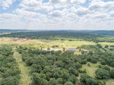 Palo Pinto County Single Family Home For Sale: 4949 Blue Flat Road
