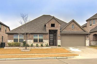 McKinney Single Family Home For Sale: 2009 Dublin Court