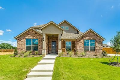 Burleson Single Family Home For Sale: 1921 Silver Falls Drive