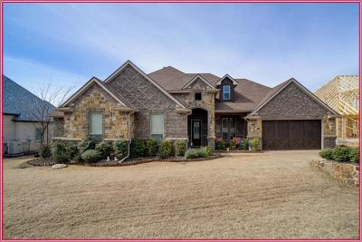 Fort Worth Single Family Home For Sale: 12317 Indian Creek Drive