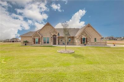 Parker County Single Family Home For Sale: 2039 Dash Lane