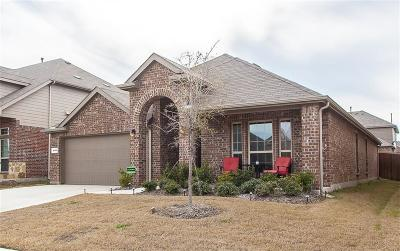 Frisco Single Family Home For Sale: 4008 Blessington Drive