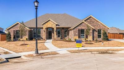 Rockwall Single Family Home For Sale: 3212 Bandera Court