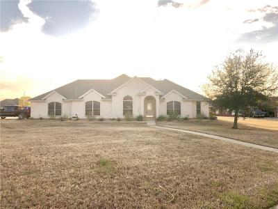 Single Family Home For Sale: 2017 Big Springs Drive